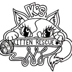 K's Kitten Rescue