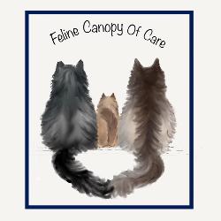 Feline Canopy of Care Inc.