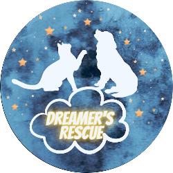 Dreamer's Rescue