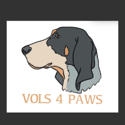 Vols 4 Paws (Formerly dragons dream rescue)