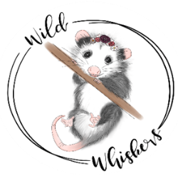 Wild Whiskers